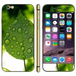 Dewdrop and Leaf Pattern Mobile Phone Decal Stickers for iPhone 6 & 6S