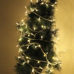 5m 50 LED Warm White Light Battery String Decoration Light for Christmas Party