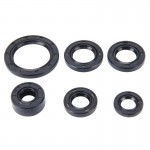 6 PCS Motorcycle Rubber Engine Oil Seal Kit for CD110