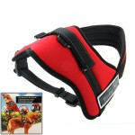 Soft Thicken Pet Chest Suspenders Dog Traction Rope, Size: S (35-50cm)(Red)