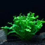 Artificial Tree Plant Grass Figurines Miniatures Aquarium Fish Tank Landscape, Size: 22.0 x 30.0cm