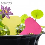 100PCS Floral Label Gardening Label Waterproof small card Insert Label Potted Label,Random Color Delivery