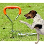 Dog Pile Fixation Spiral Nail with Handle For Medium Small Dog Long Training Outdoor, Size: 45cm*9mm