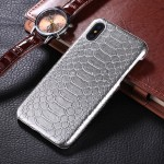 For iPhone X Snake Skin Texture Paste Protective Back Cover Case(Silver)
